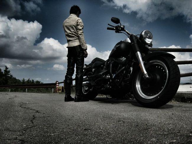 Bike バイク Harley Davidson