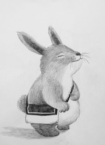 Chinchilla Totoro Sketch