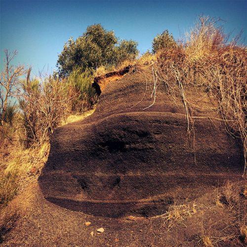 Volcano Rocks