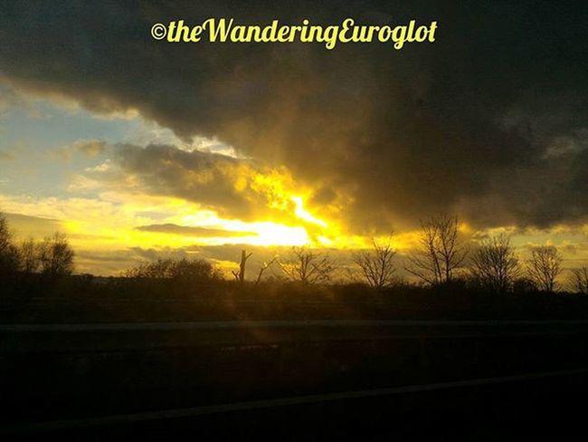 "🎤 ""Il suffira d'une étincelle, / d'un mot d'amour, pour..."" 🎤 (Johnny Hallyday) Loves_skyandsunset Sunset_vision Sunset_madness_ Sunset_stream Exclusive_sunset Fantastic_shotzs Sunsets_oftheworld Ig_shotz_sunset Sunrise_and_sunsets Sunset_ig Thebest_sunset Best_skyview Worldsunsetchallenge Jj_skylove Igsunset Great_captures_sun Super_photosunsets Sunsetsmax Sunset Coucherdesoleil Tramonto Anochecer Jaimelabretagne Igersbretagne Bretagnetourisme fansdebretagne bretagne breizh tree_magic fiftyshades_of_nature"