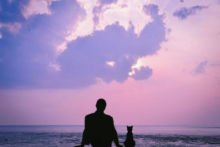 Rear view of silhouette man with cat looking at sea against dramatic sky during sunset