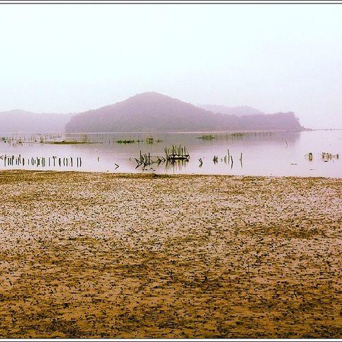 경남 사천 갯벌 Seashore mud flat in Sacheon, Korea  사천  바다  갯벌 Sacheon seashore mud_flat sea