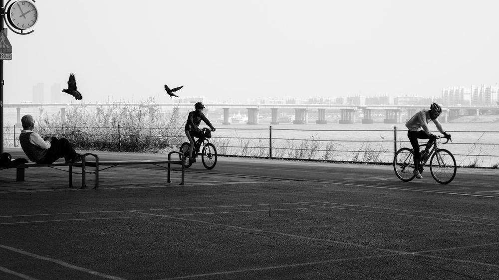 Asia, South Korea, Seoul, Han River Bicycle City Outdoors Capture The Moment Seoul South Korea Southkorea Stationary SUPPORT Sport In The City B&w Street Photography Old But Awesome Seoul, Korea Korea Celebrate Your Ride Photography In Motion