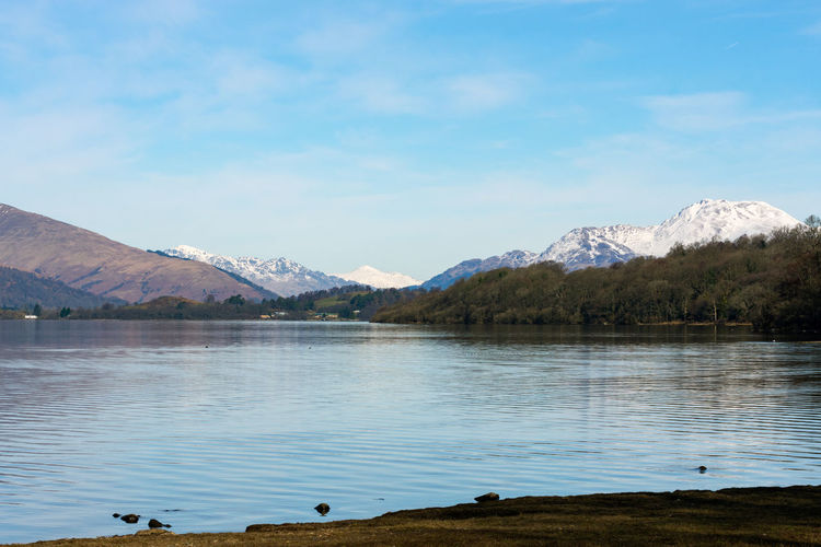 The snow capped Ben Lomond Scotland Animal Themes Animals In The Wild Beauty In Nature Ben Lomond Bird Day Freshwater Lake Landscape Loch Lomond Mountain Mountain Range Nature No People Outdoors Scenics Sky Tranquil Scene Tranquility Tree Water