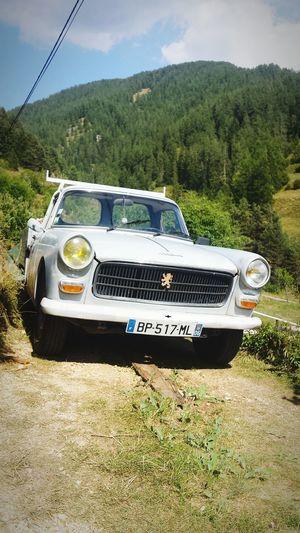 Le Pick-up Peugeot 404 de mon cousin Gérard à de 40 ans qu'elle roule en montagn, increvable Old-fashioned Peugeot404 Collector's Car Youngtimer Outdoors No People Day Sky