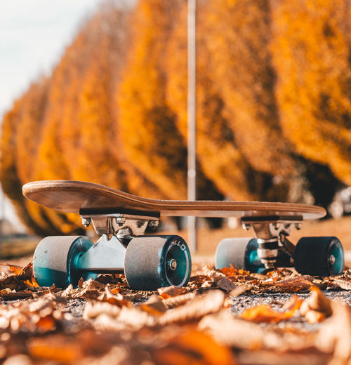 Skateboarding Autumn Brown Change Close-up Day Field Focus On Foreground Land Leaf Metal Nature No People Orange Color Outdoors Plant Part Selective Focus Skate Skateboard Sunlight Surface Level Tree Wood - Material