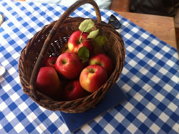 My Moments  Country Life Cottage Life Apples From My Garden My Places Fruits Fruitbasket Tablecloth Jummy Juicy Smell Of Authum Autumn Ready-to-eat