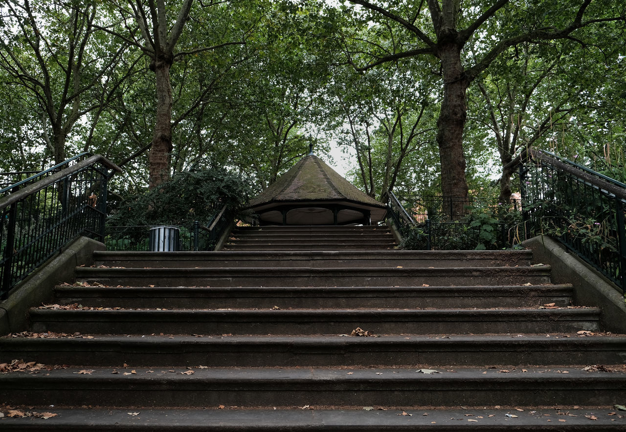 LOW ANGLE VIEW OF STEPS IN PARK
