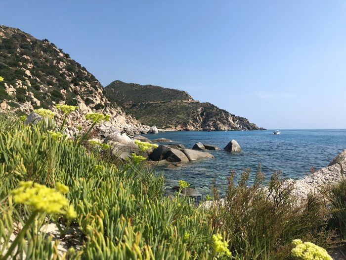 Punta Molentis Villasimìus Sardegna Water Sea Sky Beauty In Nature Plant Tranquility Tranquil Scene Nature Scenics - Nature Horizon Over Water Sunlight