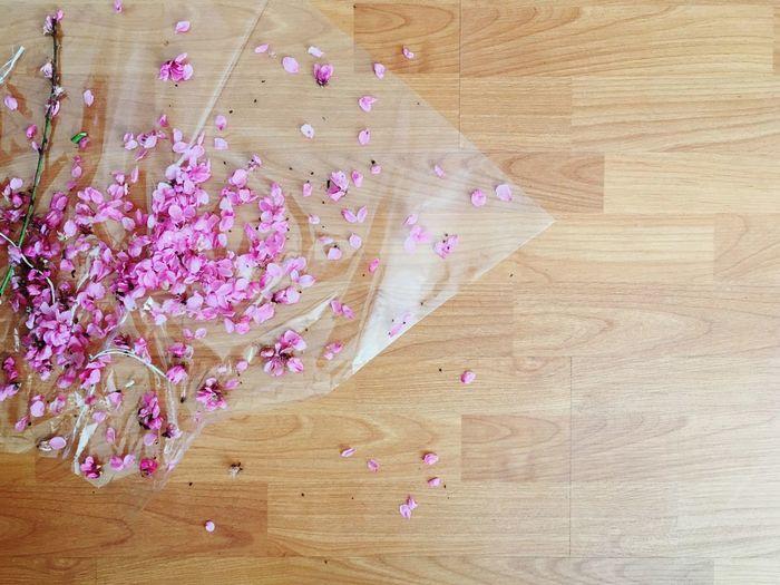 High angle view of pink petals on hardwood floor