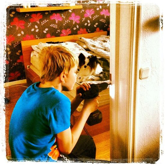 The Kid gave me a helping hand with the door Yesterday and our Dog Stiff was supervising that we did a good work. bed flowers tapet iphone all_shot swe sweden sverige staffanstorp nämdemansgården