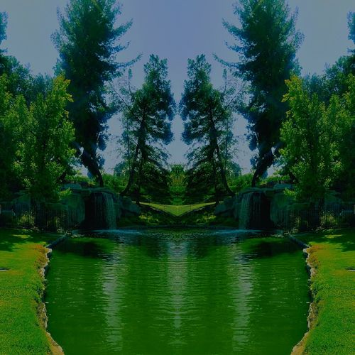 Tree Water Green Color Outdoors Nature Day Beauty In Nature Mirror Reflection Mirrored No People Mirroreffect The Week On EyeEm EyeEmNewHere
