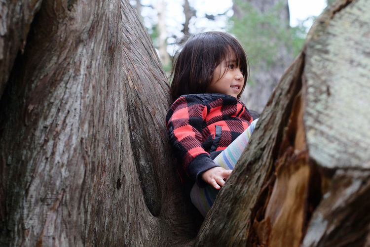 3 year old girl proud to climb on tree 3 Years Old Achievement California Proude Stow Lake USA Photos Boys Child Childhood Children Only Climbing Trees Day Girl Golden Gate Park One Person Outdoors People Pride Smiling Tree Tree Trunk Wood - Material Investing In Quality Of Life The Week On EyeEm Breathing Space