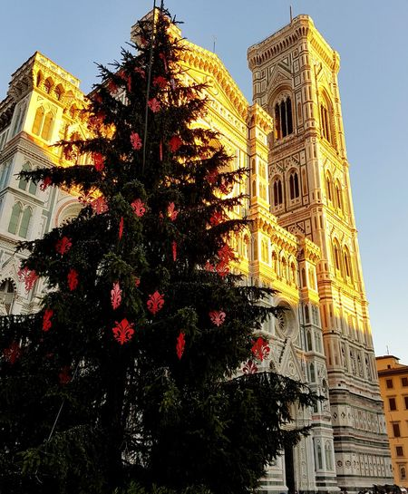 Architecture Low Angle View Sky Xmas🎄 Xmas Trees 2016😍 Feel The Journey, Samsung Galaxy S7 Edge EyeEm Best Shots Santa Maria Del Fiore Firenze Natale  Piu Bella Christmas Decoration Travel Destinations Illuminated Outdoors Feel The Journey Low Angle View Christmas Tree Tree Day