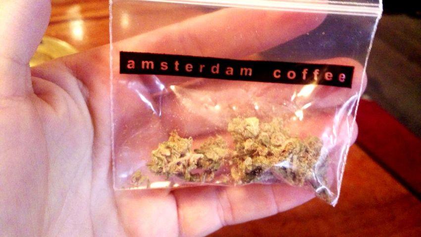 Weed Amsterdam Amsterdam Coffeeshops Ganja Legalize Weed Legalize It! Decriminalize Chillin' Amsterdam Leidseplein Amsterdam Bulldog