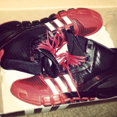 New ?? Ballin Shoes ? Fresh kicks hot ♨ basketball bball adidas ballislife athelete pointguard crazy quick??
