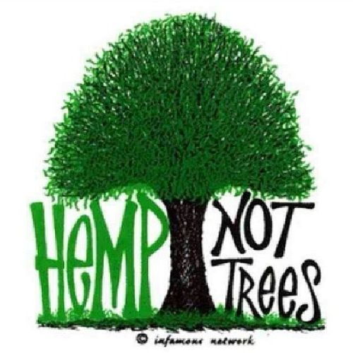 Ya mon stop killin dem air we breed Hempnottrees Hempuse Ital SaveMotherEarth