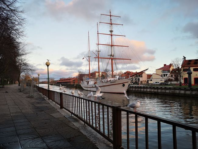 Winter evening with sails in Klaipeda City Water Nautical Vessel Harbor Urban Skyline Cityscape Sky Architecture Cloud - Sky Built Structure Tall Ship Sailing Ship Passenger Ship Ship Yachting Sailing Passenger Craft Nautical Equipment Regatta Chain Swing Ride Moored Radar Mast Cruise Ship Rigging