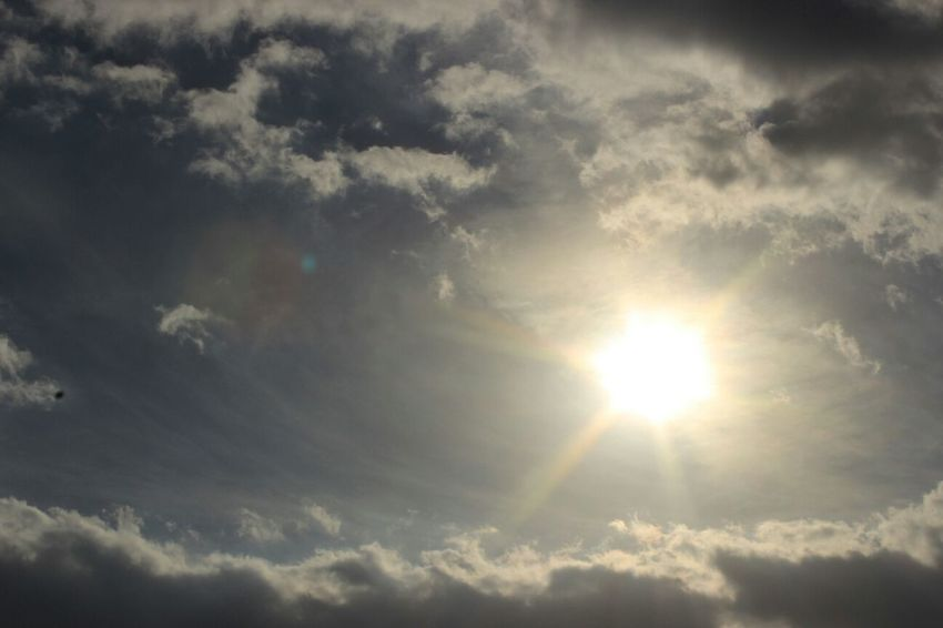 Sunshine Sky Sunny☀ Morning الصورة بدون تعديل