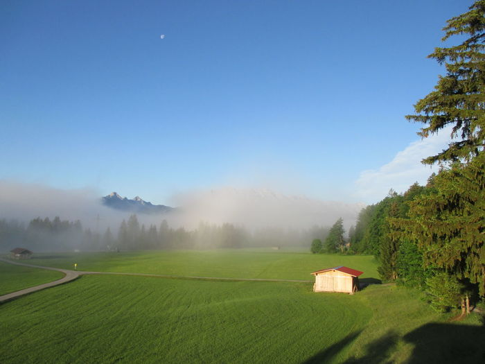 Scenic view of agricultural landscape against blue sky during foggy weather