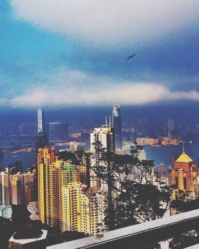 Гонконг Victoria Peak Hong Kong HongKong