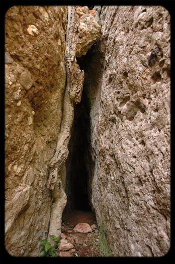 cova Egara Nature Eyephoneography3 Cave Sant Llorenç Del Munt
