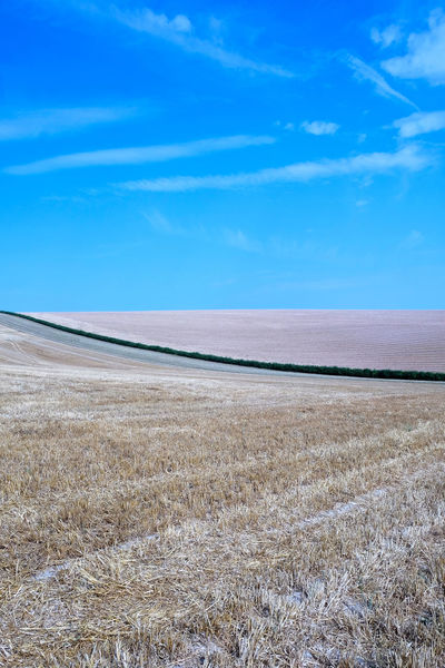Beauty In Nature Blue Cloud - Sky Cutting Through Day Environment Field Grass Hedgerow Horizon Horizon Over Land Idyllic Land Landscape Nature No People Non-urban Scene Outdoors Plant Salt Flat Scenics - Nature Sky Tranquil Scene Tranquility
