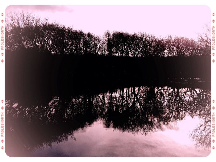 Sunny Day Dunes Lake Monochrome