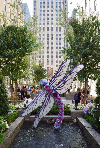 Dragonfly Art ArtWork Capture The Moment Outdoor Photography Great Outdoors Enjoying The View Enjoying The Sights Enjoying Time Enjoying Life Enjoying The Moment Places I've Been NYC Street Photography Great View NYC Photography Rockerfellercenter Channelgardens My View NYC Streetphotography New York Newyork Wings