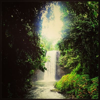 Breathtaking , and Timeless Beauty of LakeSebu Waterfalls . surely you will ne lost in time. WOW Philippines Instagramasia Igmanila Ignaturale Samsunggalaxy Itsmorefuninthephilippines Beautiful Treasure .