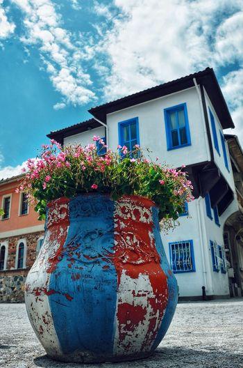 Flowers Bursa /