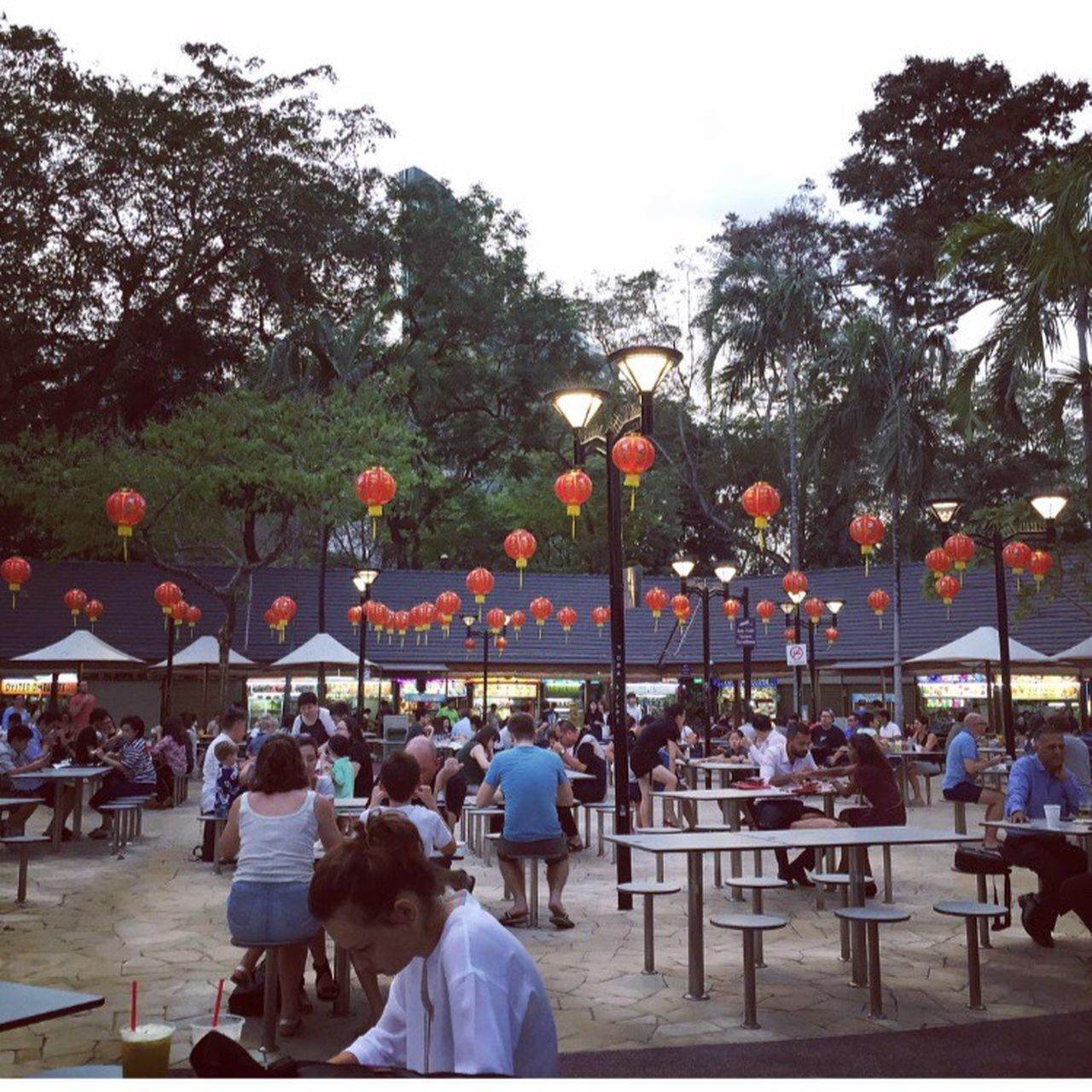 tree, table, large group of people, restaurant, cafe, outdoors, real people, women, men, day, sitting, food, nature, people, sky, adult