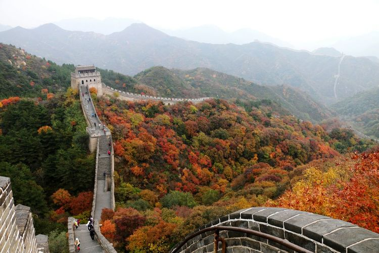 Walking on the Great Wall in China with the colourful trees during autumn. Mountain Range Mountain Nature Travel Destinations Travel Tree Landscape Beauty In Nature Outdoors Scenics Forest Cultures Autumn Wanderlust China Photos China ASIA Mountain View Tranquility Beijing Beijing, China