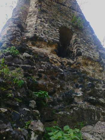Close-up Nature Ruins Toweringabove Rocks Tall Bell Tower Herbs Shrines Run-down