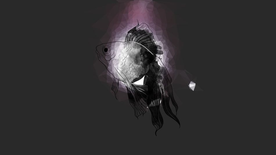Fish Floating Thin Air Orb Of Light Tranformation Unknown Entity Fins Gills