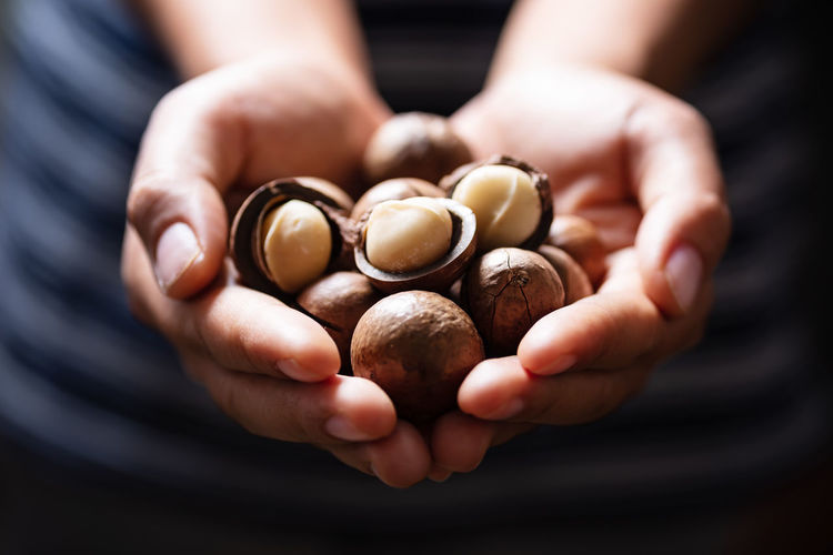 Macadamia nuts Human Hand Hand Human Body Part Holding Hands Cupped Food And Drink One Person Food Midsection Close-up Indoors  Adult Handful Large Group Of Objects Selective Focus Studio Shot Freshness Healthy Eating Macadamia Nuts Macadamia Giving