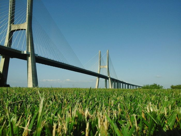 Bridge Vasco da Gama water grass nature construction Sky Connection Clear Sky Outdoors Nature Tranquil Scene Beauty In Nature Day Horizontal No People