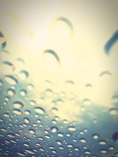 Rain Drops Rain Lluvia