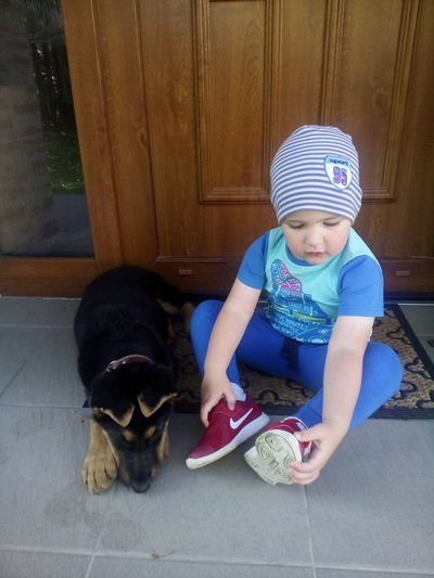 boy and dog Pets Full Length Dog Puppy Cute Baby Striped Door Baby Clothing One Baby Boy Only Innocence Babyhood Toddler  Baby Boys