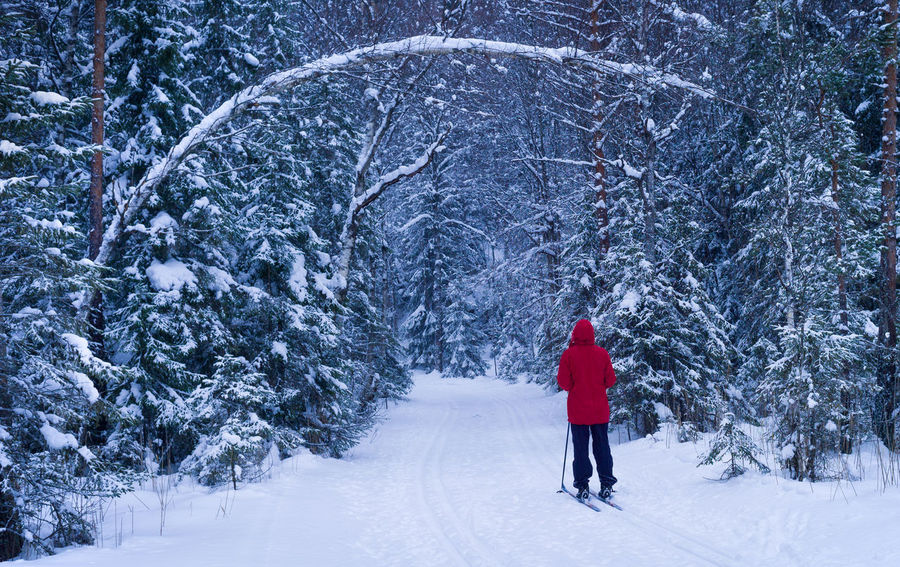 Skier in the forests passing a snow portal Snow Winter One Person Real People Nature Beauty In Nature Red Outdoors Snowing Skiing Crosscountry Red Anorak Portal Forest Leisure Recreation  Tranquility Winter EyeEmNewHere Environment Alone Peace