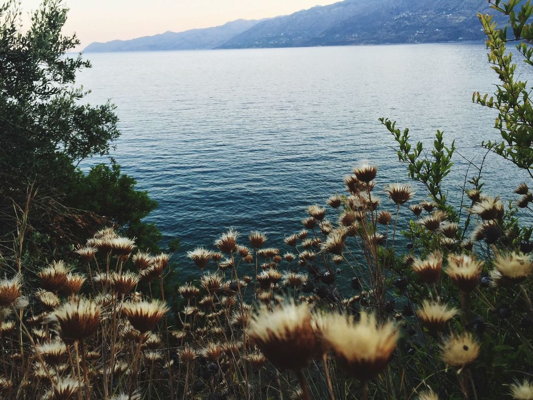 Check This Out Relaxing Taking Photos Enjoying Life Nature_collection GREECE ♥♥ EyeEm Nature Lover Peloponnese Mani