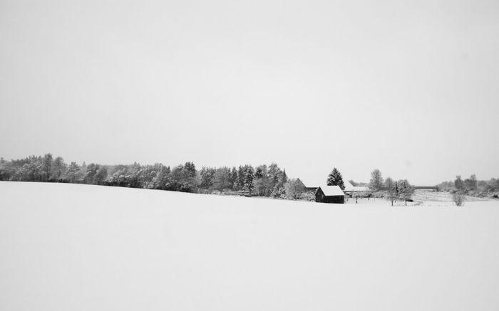 Blackandwhite Blackandwhite Photography Black And White Black & White EyeEm Best Shots - Black + White Nature Winter Nature_collection EyeEm Nature Lover Beautiful Nature