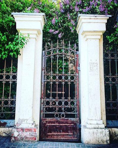 Вход усадьба ворота сирень Коломна Kolomna Enterance Old Buildings Architecture Details Eyeemphotography