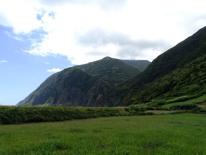 Landscape Azores Beauty In Nature Rural Scene Hill Tree Area Sky Landscape Cloud - Sky