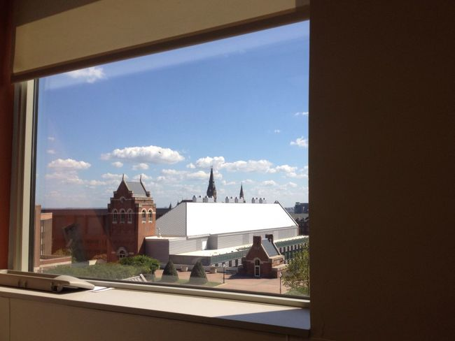 From My Point Of View From My Window Urban Nature