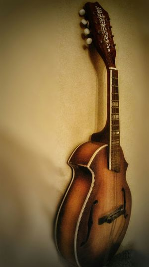 Music Instrument Musical Instruments Mandolin Strings Picks And Strings Brown Lines