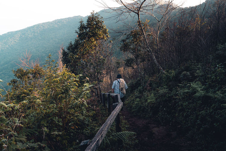 Full length of man on tree mountain