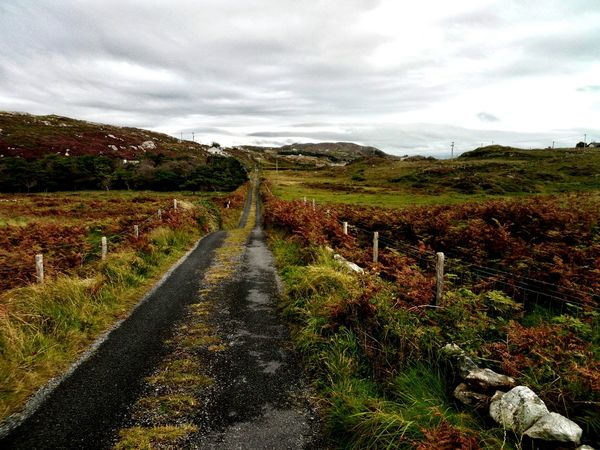 Landscape Cloud - Sky Rural Scene The Way Forward Agriculture Remote Nature Mountain Outdoors Day Scenics Road Beauty In Nature No People Autumn Mountain Range Grass Winding Road Desert Sky Ireland Connemara Europe Ahead Purpose
