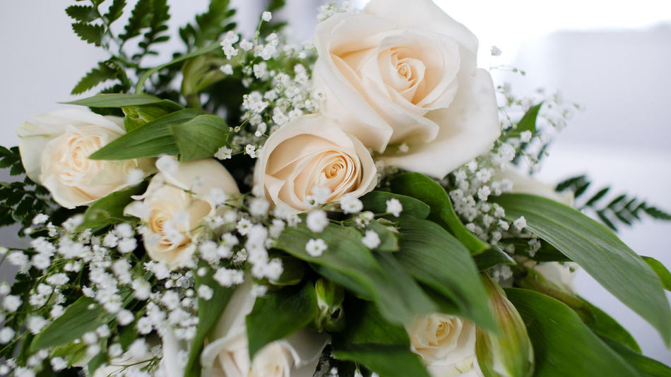 Beauty In Nature Bouquet Celebration Close-up Day Flower Flower Head Fragility Freshness Indoors  Leaf Nature No People Petal Plant Rose - Flower Wedding White Color
