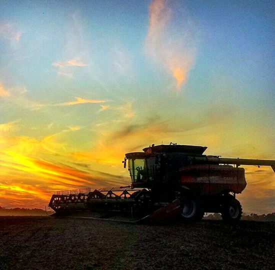 Agriculture Sunset Harvesting Combine Harvester Combine Soybean Fields Rural Scene Crop  Agricultural Machinery Dramatic Sky No People Outdoors Nature Country Views Farmland Farmers Office The Week On EyeEm